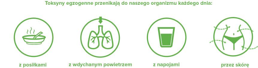 toksyny-egzogenne